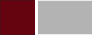 NAL-logo-big-two