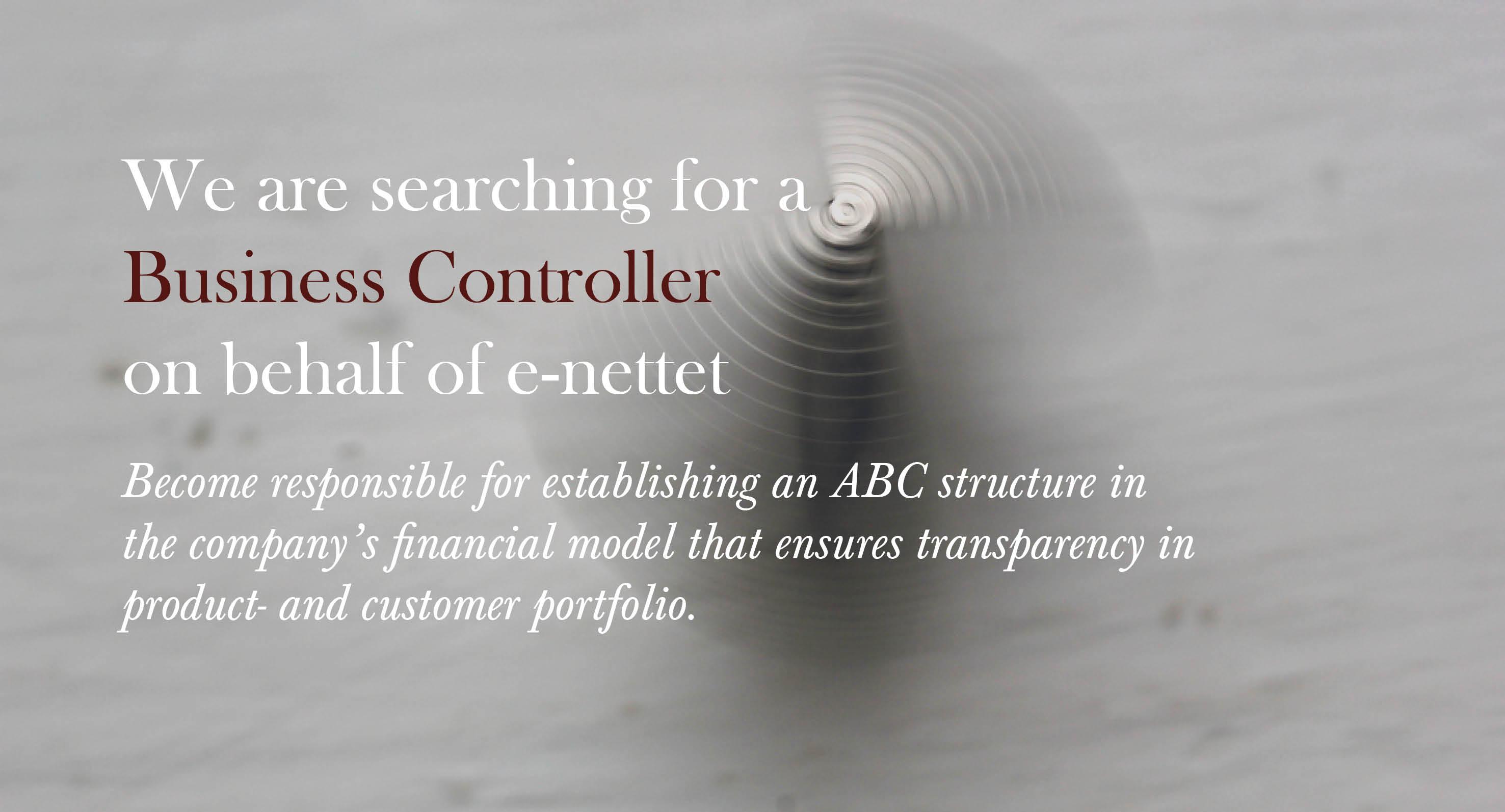 e-nettet - Business Controller (EN)