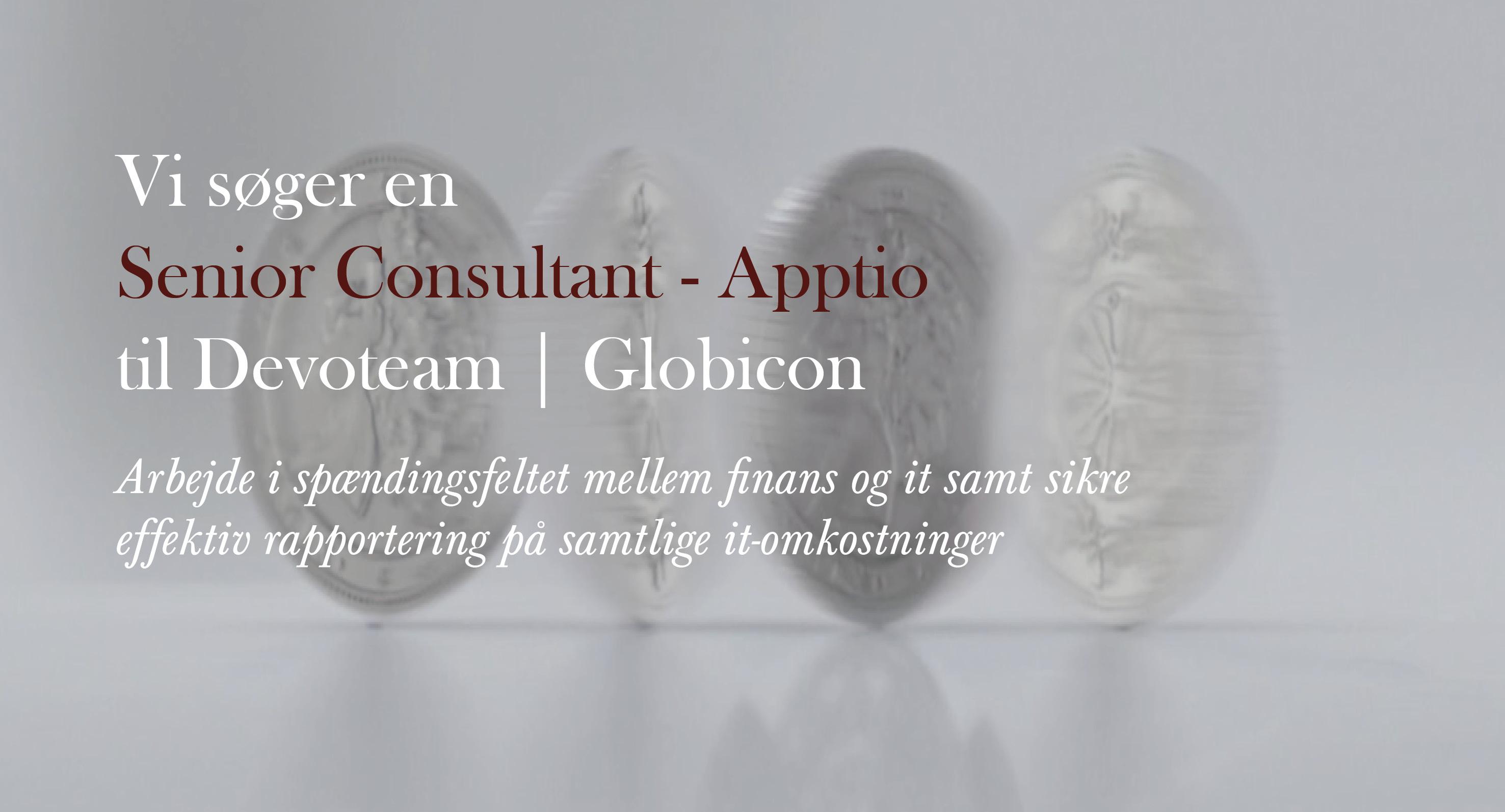 Senior Consultant - Apptio ITSM - Devoteam - Globicon